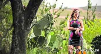 Luz Merly y su reto en la Quinta Vergara - Diario Correo