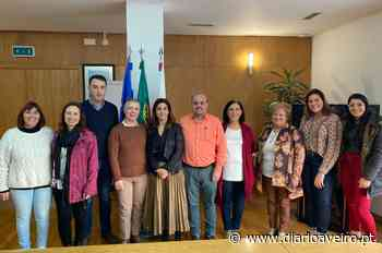 Estimulação cognitiva para seniores avança em Oliveira do Bairro - Diário de Aveiro