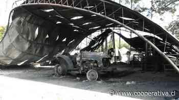 Una casa y cuatro galpones destruidos por incendio forestal en Pitrufquén - Cooperativa.cl
