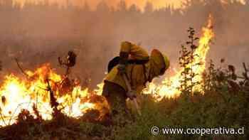 Amplían alerta roja para las comunas de Gorbea y Pitrufquén por incendio forestal - Cooperativa.cl