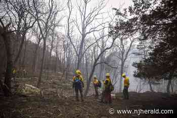 "Worthington forest fire: ""80 acres, 80% contained"" - New Jersey Herald"