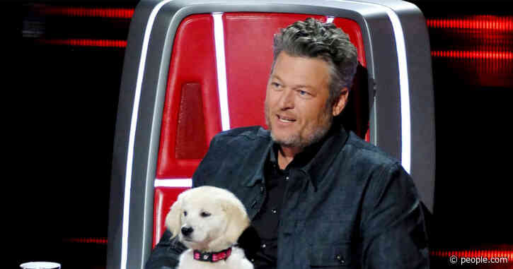 Blake Shelton Tries to Lure The Voice Contestant Away from Nick Jonas' Team with a Puppy