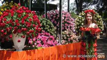 Carnaval de Holambra tem sorvete grátis e carros alegóricos floridos - ACidade ON