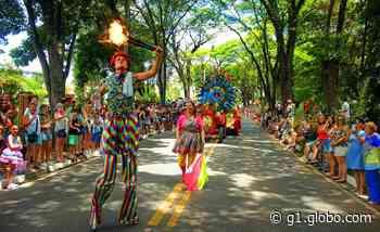 Com carros alegóricos floridos, carnaval de Holambra espera 10 mil turistas nesta terça - G1