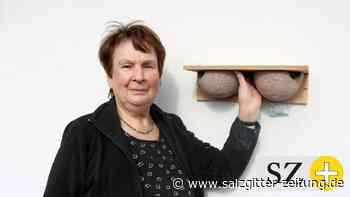 Hilfe für die Schwalben in Stadt und Kreis Wolfenbüttel