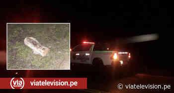 Delincuentes armados asaltan y roban en carretera cerca de Tabalosos - VIA Televisión