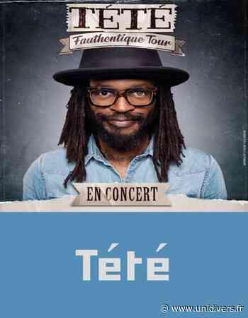 Concert Tété ( Pop-rock Folk ) NANTEUIL LE HAUDOUIN 1 février 2020 - Unidivers