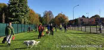 Pessano con Bornago, inaugurata la prima area cani del paese (Fotogallery) - Fuori dal Comune - Fuoridalcomune.it
