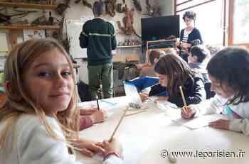 Marly-le-Roi : 7000 enfants passent chaque année à l'école de la forêt - Le Parisien