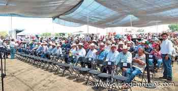 Finalizan con trilla en Tepalcingo - Diario de Morelos