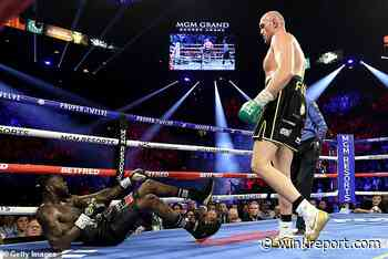 After Fury's stunning win - what next for the heavyweight division? - Wink Report