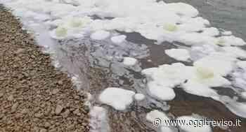 Schiuma bianca nelle acque del Piave, allarme a Spresiano. - Oggi Treviso