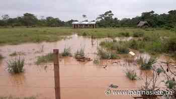 Reportan descenso de nivel de ríos en municipios de Rurrenabaque y San Borja - Pagina Siete