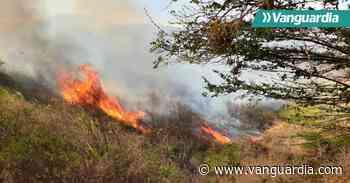 Bomberos intentan apagar fuerte incendio en Güepsa, Santander - Vanguardia