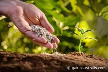 Fertilizer Nutrient Global Market 2020 Analysis, Forecast to 2026 Acron, Rossosh, ZAT, ICL, Helena Chem, IFFCO, Helm AG, Azomures - Galus Australis