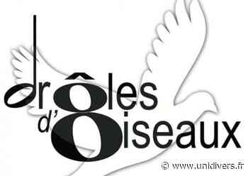 Stages – Vielle à Roue, Violon, Musique d'Ensemble Le Poirier | Lentilly Lentilly 4 juillet 2020 - Unidivers