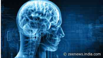 Scientists show how brain distinguishes lyrics from music