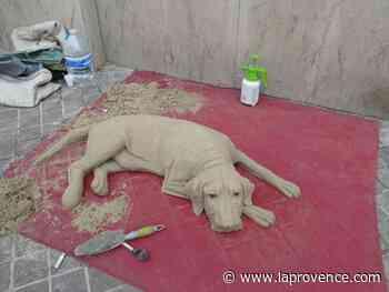 Marseille : un chien aussi vrai que nature à Noailles - La Provence