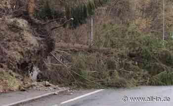 """Straße gesperrt: Sturmtief """"Bianca"""" stürzt in Pfronten mehrere Bäume um - Pfronten - all-in.de - Das Allgäu Online!"""