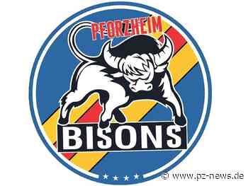 Pforzheim Bisons können in Eppelheim den Titel in der Eishockey-Landesliga holen - Pforzheimer Zeitung