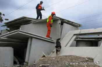 Villejust : 120 chiens de sauvetage mis à l'épreuve - Le Parisien