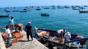 Pescadores de Sechura reclaman desembarcadero - La Hora