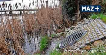 Zeuthen - Verseuchtes Grundwasser: Entwarnung in Zeuthen - Märkische Allgemeine Zeitung