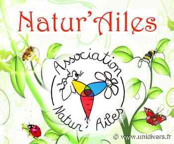 Visite et animations au jardin écologique de Natur'ailes VARENNES SUR AMANCE lieu-dit « Les anciennes serres » Varennes-sur-Amance 7 juin 2020 - Unidivers