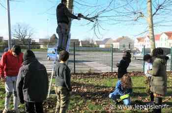 Le collège de Nanteuil-le-Haudouin s'engage en faveur de l'environnement - Le Parisien
