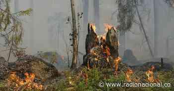 Incendio en Quetame, Cundinamarca: un 70% está controlado - http://www.radionacional.co/
