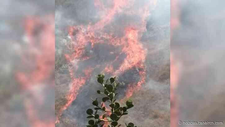 Grave incendio forestal en Quetame deja cinco personas heridas - Noticias RCN