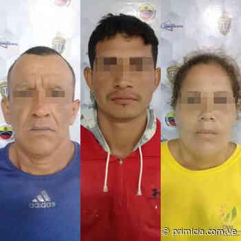 Nación Tres detenidos por robo a turistas en Porlamar Efectivos de seguridad buscan a dos personas - primicia.com.ve