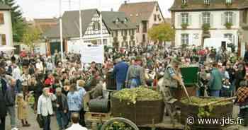 Fête des vendanges Marlenheim 2020 : date, programme, animations, dégustations... - Journal des spectacles