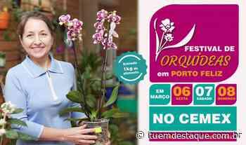 Porto Feliz recebe Festival de Orquídeas neste fim de semana - Itu Em Destaque