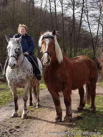 Pferdeseelen steht für Gnadenhof in Elm - Saarbrücker Zeitung