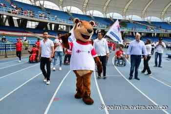 ¡Un Coatí! Pana, la nueva mascota de los Panamericanos Junior - Extra Palmira