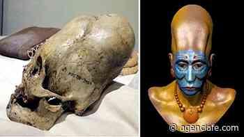 Exámenes de ADN revelan que Cráneos Paracas no son humanos - Agencia Fe