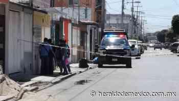 Pepenadoras hallan feto dentro de la basura en Ciudad del Carmen - El Heraldo de México