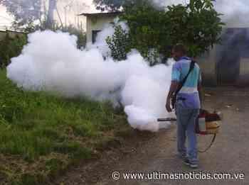 Fumigan comunidades de Santa Teresa del Tuy - Últimas Noticias