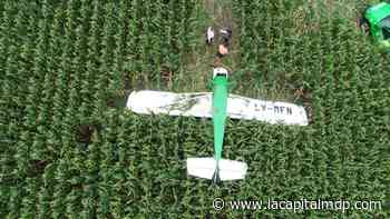 Confirmaron el motivo que provocó un aterrizaje de emergencia en un maizal - La Capital de Mar del Plata