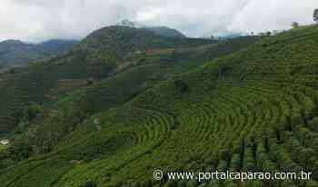 Agricultores familiares de Espera Feliz viram referência na produção de cafés especiais - Portal Caparaó