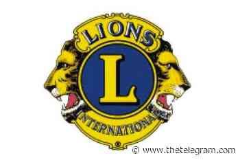 Grand Falls-Windsor Lions Club bringing back public speaking event - The Telegram