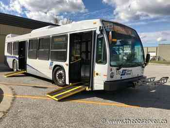 Point Edward reviewing bus service - Sarnia Observer
