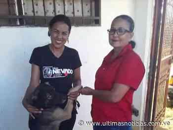 Dos detenidos en Zaraza por apalear a un perro - Últimas Noticias