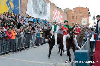 Torrita di Siena, rinviata la 64ª edizione del Palio dei Somari - SienaFree.it