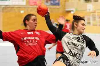 Die Handball Damen 1 TSV Birkenau unterliegen bei der SG-HH * Fokus aber auf Restprogramm: Der Blick geht bereits auf die restlichen Begegnungen in der Handball Oberliga Baden-Württemberg - kraichgau.news