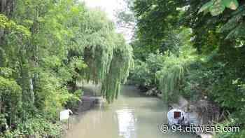 Joinville-le-Pont: les riverains du canal Polangis en guerre contre le béton - 94 Citoyens