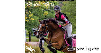 USEA Horse of the Month: Madoc Mari - United States Eventing Association