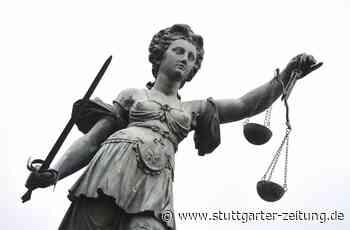 Amtsgericht Besigheim - Autofahrer war unaufmerksam – und zu schnell - Stuttgarter Zeitung