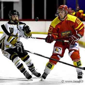Hockey sur glace - Renards Orléans - Dammarie-les-Lys : 4-5 - La République du Centre